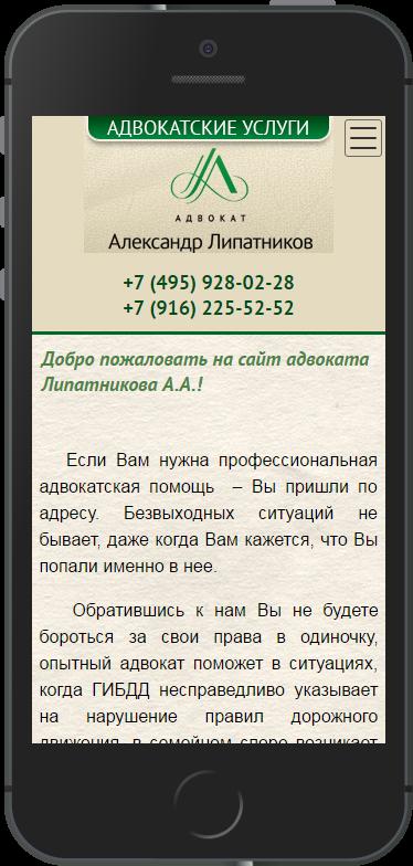 адвокат липатников александр александрович фото